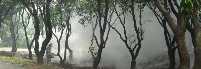 热(烟)雾空间喷洒