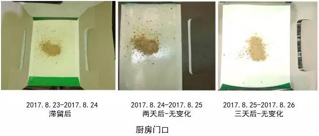 厨房门口蟑螂的密度检测