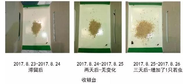 收银台处蟑螂的密度检测