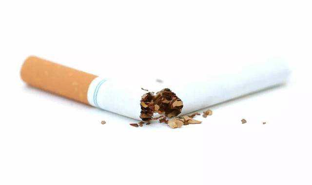 香烟叶泡制的烟叶水灭蟑螂