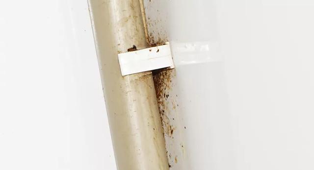 线管内外都有蟑螂,其它水管煤气管是在靠墙处,