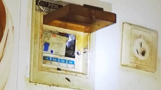 配电箱蟑螂藏身处