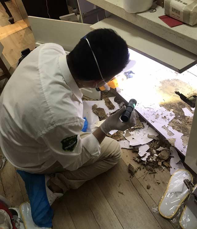 白蚁防治公司防治白蚁的有效方法