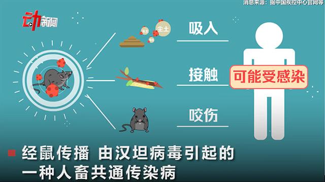 如何有效防治老鼠引起的汉坦病毒?