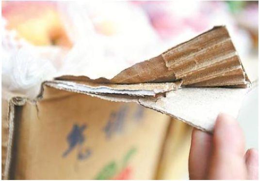 纸箱夹层藏进蟑螂