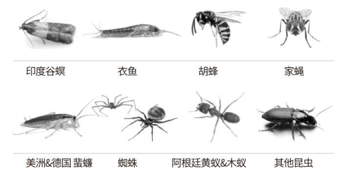 触杀多种害虫