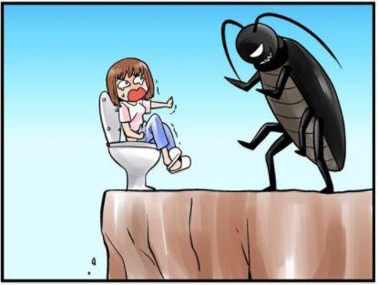 怎么才能除掉蟑螂?